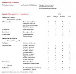 parasitoides-tordeuses